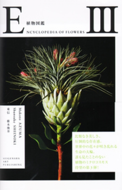 Encyclopedia of Flowers III
