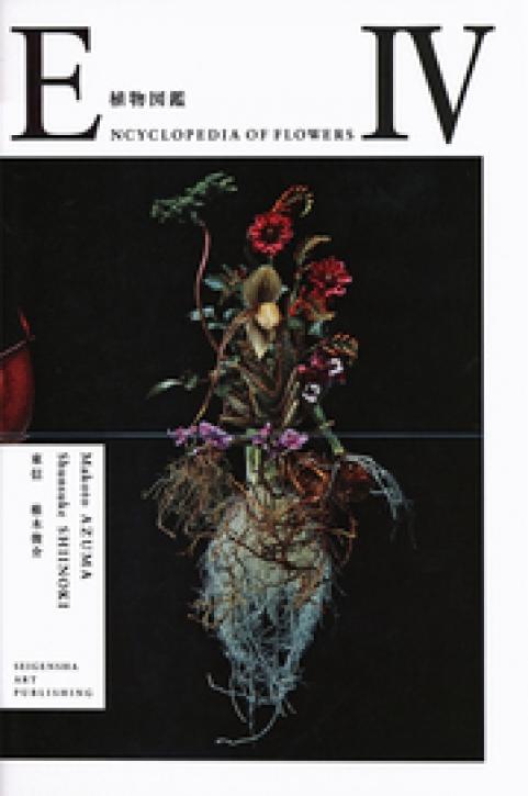 Encyclopedia of Flowers IV