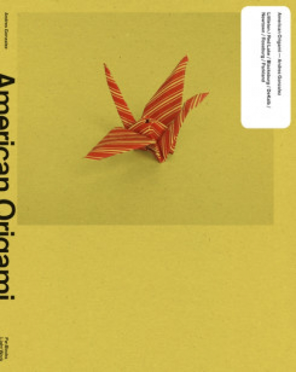 Andres Gonzalez - American Origami
