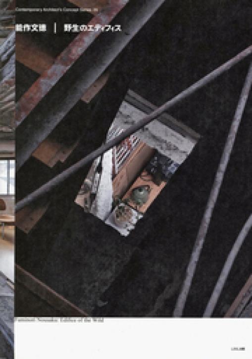Fuminori Nousaku - Edifice of the Wild (Contemporary Architect's Concept Series 29)