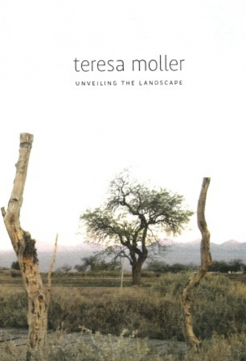 Teresa Moller and Associates - Unveiling the Landscape