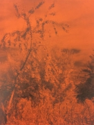 Geert Goiris - Peak Oil (Limited Edition With Print)
